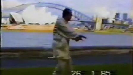 魏树人95年在沃洲演示拳架