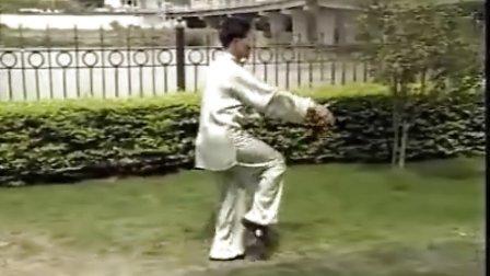 丁水德老师演练85式传统太极拳