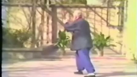 傅钟文先生拳剑棍演练