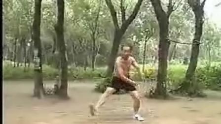 六合拳 一肘一把  刘俊安(武汉)