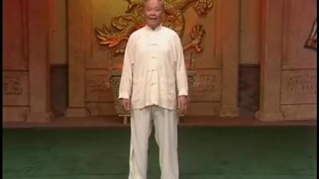 杨振铎传杨式103式太极拳03