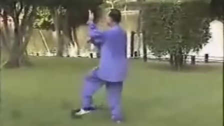 杨式太极拳府内派老架1
