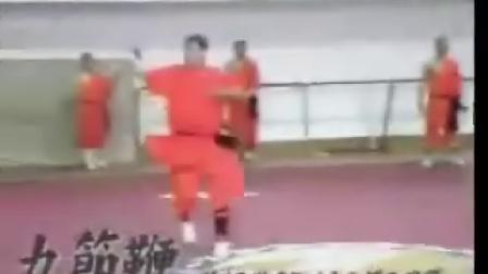 日本明星泷泽秀明到少林寺修行(2)