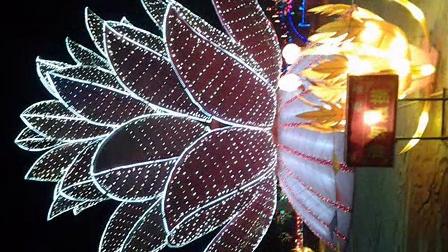 2014年宝泉禅寺庙会影片|临沂祛斑