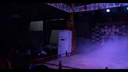第八届新蕊杯参赛作品纪录片《川剧引发的思考》王晶