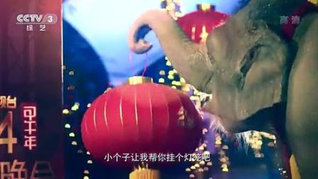 (电影)2014年春晚-语言节目集锦   480P