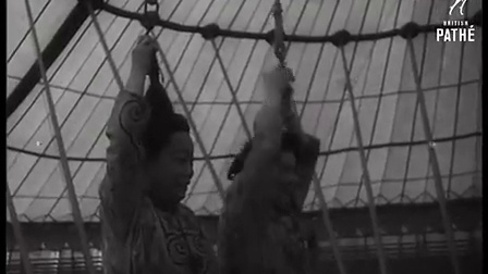 早期中国艺人在外表演吊小辫