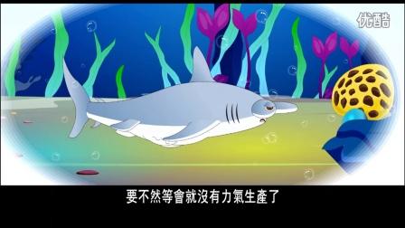 爱护生命的故事-可怜的鲨鱼妈妈