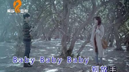 黑龙-Baby别放手