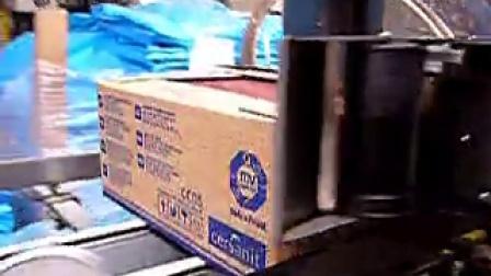 意大利札纳喜ZANASI高解像喷码机案例 -纸箱条码、品名喷印