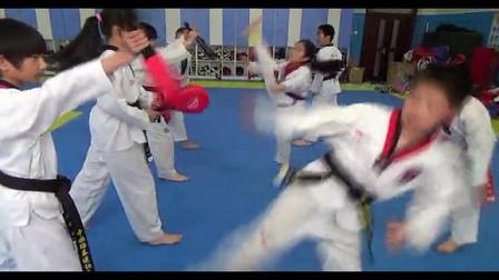 康美雀跆拳道脚靶