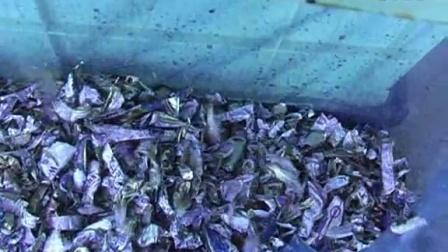 Recycle Cutter-塑料容器破碎及內容物分離專家