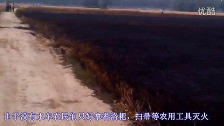 河南周口太康突发大火燃尽200多亩麦田