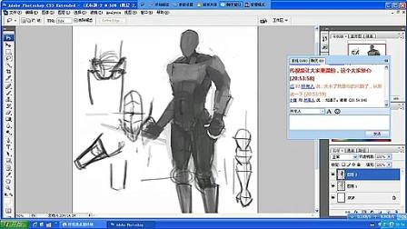 【人体的结构精华版】名动漫原画插画视频教程