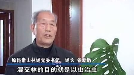 奉献历程(上)——昆嵛山林场建场七十周年
