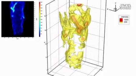 举升火焰的层析重构(达姆施塔特工业大学,LaVision)