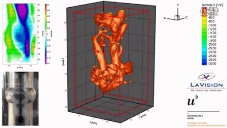 颈动脉模型中流场的层析PIV测量(瑞士伯尔尼大学,LaVision)