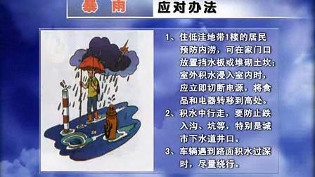 暴雨预警时的应对办法