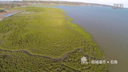 CMCN 航拍器首次红树林航拍记录
