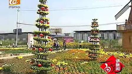 雅林现代农业园万盆菊花展 菊韵葱葱秋意浓