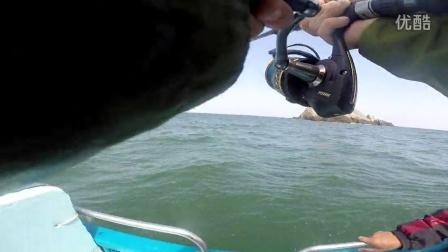 拖中海狼,上水时跟住几条海狼!