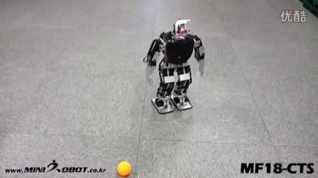 Robot with Camera