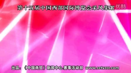西博会【15 th】新闻中心