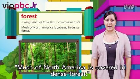 Word Whiz 50 forest
