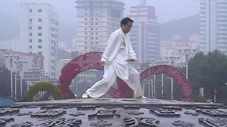 杨振宇东岳太极拳一路表演