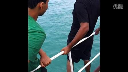 恶搞跳水之二逼带你去看海