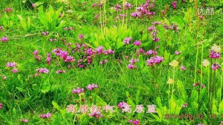 中国大陆第一个国家公园——普达措公园