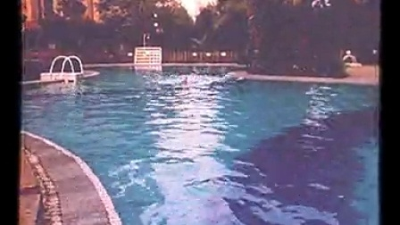 小区的游泳池还不错呢