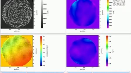 LaVision 体视形变应变分析软件系统(DVC)
