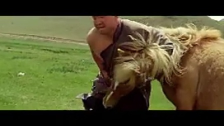 K024内蒙古摔跤表演唯美慢镜草原运动