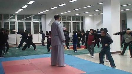 青龙出水 招远杨应建心意混元二十四式太极拳教学