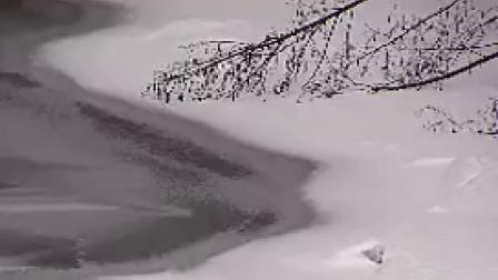 N015冰河冰雪世界河流冰雪融化