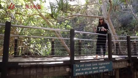 聚焦澳洲:彩虹费沙岛
