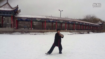 宁夏西吉永清湖42式太极拳之一《赵艳凤》
