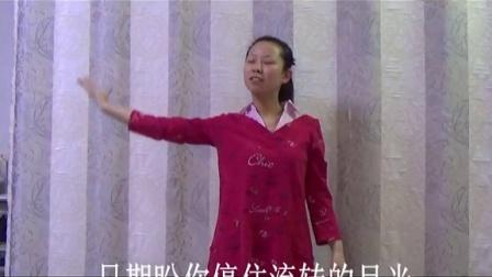 《爱的供养》王海力手语教学完整版