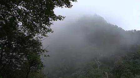 千年菩提路·中国名寺高僧·完整版34峨眉山(下)