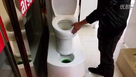 莱尔诗丹马桶冲水效果