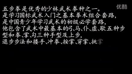 五步拳教学视频-郑州武术培训_郑州散打培训_郑州搏击培训_郑州空翻特技培训_郑州少林武术_郑州飞龙武术馆