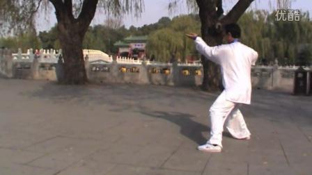 祝国玺学练雷慕尼大师陈式太极拳45式【反方向】