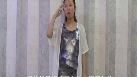 《凤凰于飞》王海力手语教学完整版