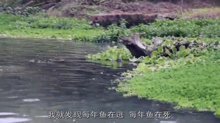 第九届新蕊杯参赛作品纪录片《渔人》王政