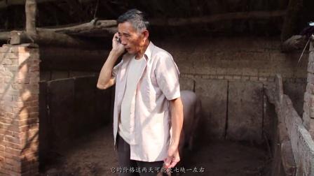 第九届新蕊杯参赛作品纪录片《我的父亲》宋国忠