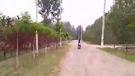 青龙湾森林公园(下集)