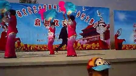 016沂南新王社区