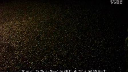 五、土元幼虫及中虫的管理技术 何停土元养殖技术视频 人工养殖技术 土元养殖技术视频