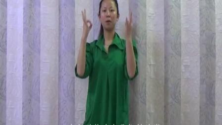 《时间煮雨》王海力手语教学完整版